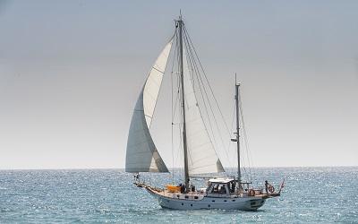 Gourmet Sailing Experience